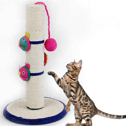 Ohdoggi.com cat scratch post